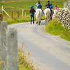 Inishbofin Trail Riding