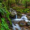 Uvas Canyon County Park waterfalls
