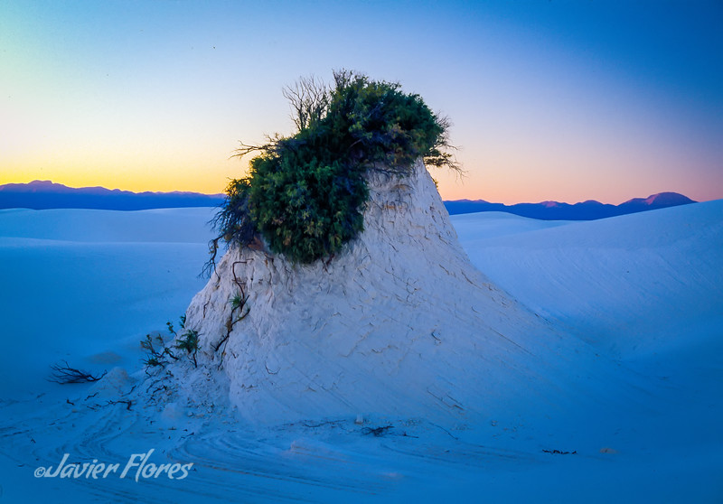 White Sands Formation