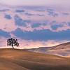 Yolo County Sunset