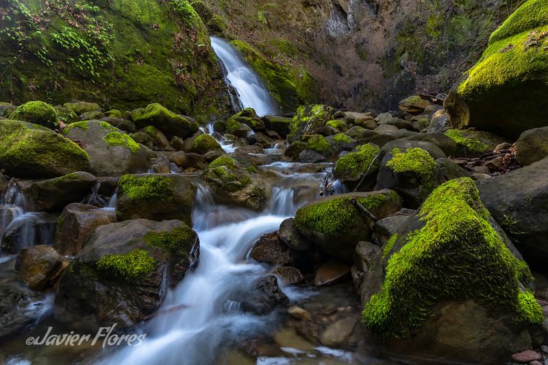 Waterfall in the Santa Cruz Mountains