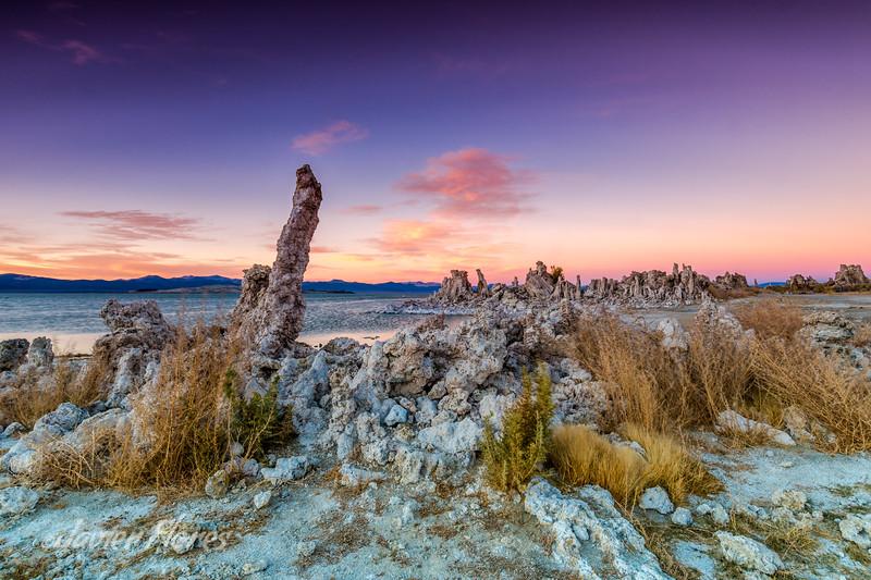 Tufa at Mono Lake