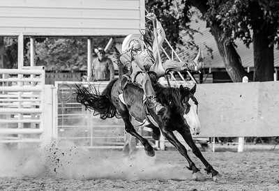 Day 3 of B&W Challenge: Bronc Rider