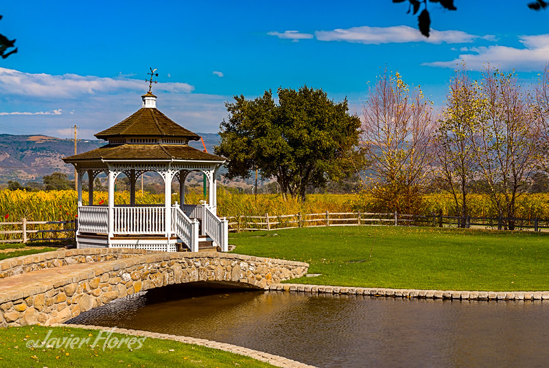 Bridge to Gazebo