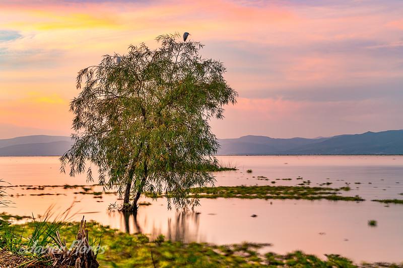 Sunrise at Lake Chapala