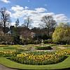 The dingle, Quarry Park, Shrewsbury in Spring.