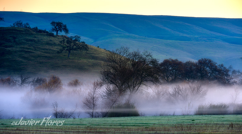 South San Jose Sunrise