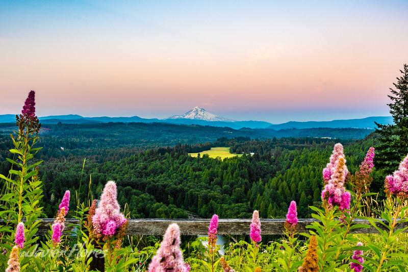 Sunset at Mt. Hood
