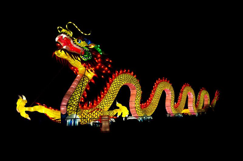 Dragon Festival (Philly)