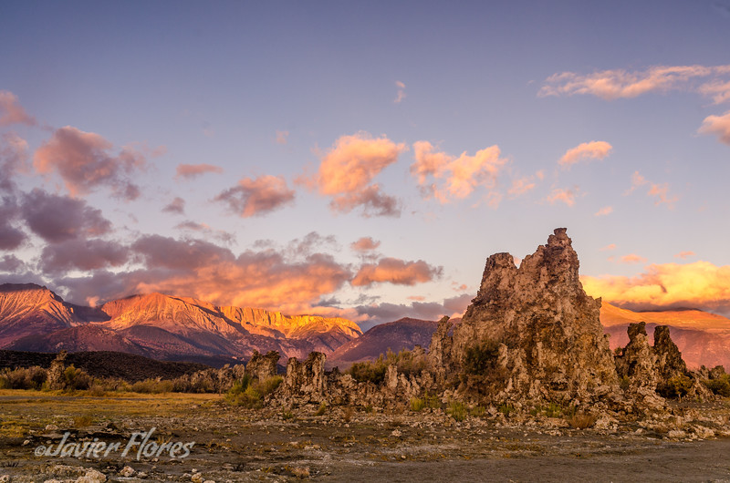 Tufa at Sunrise Mono Lake
