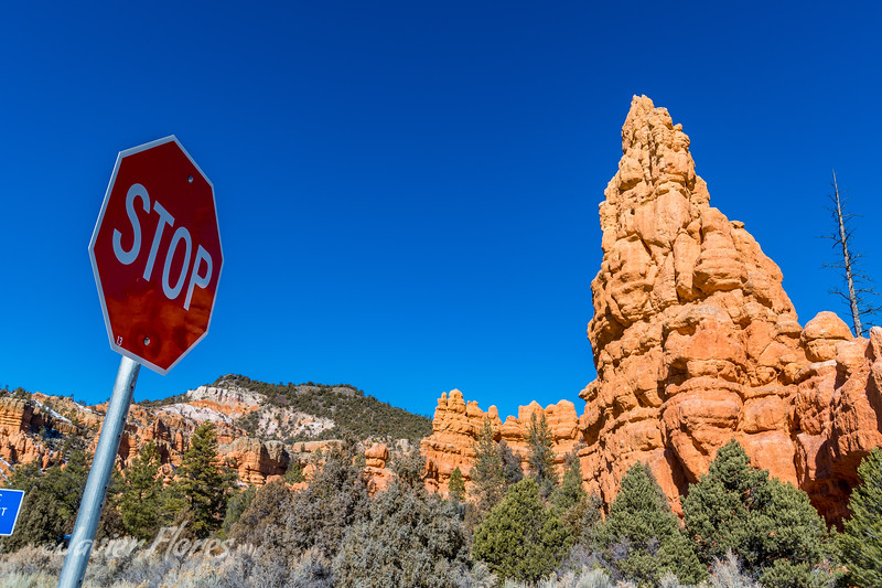 Red Canyon Scenic Byway 12, Dixie National Forest