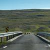 Iceland_184
