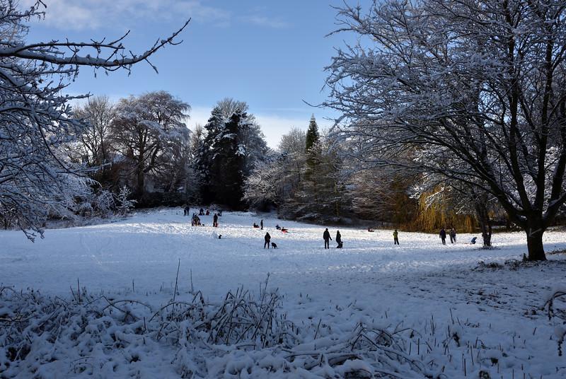 Sledging in the snow, Shrewsbury.