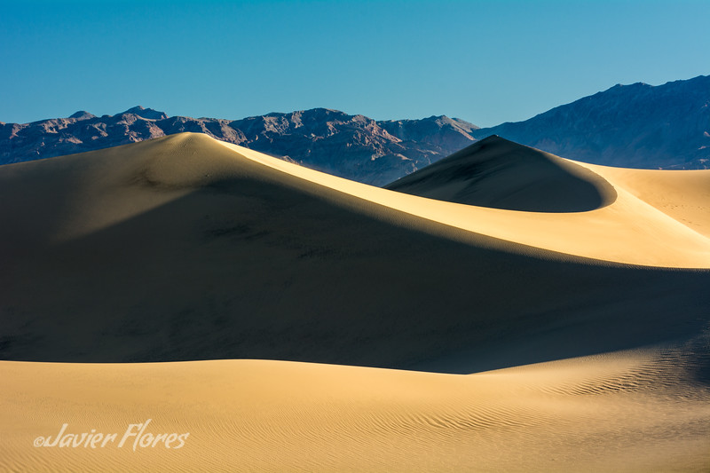 Shadows and Highlights on Dunes