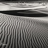 Mesquite Sand Dunes in Black and White