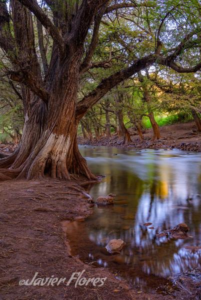 Los Sabinos River