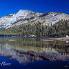 Tenaya lake reflections