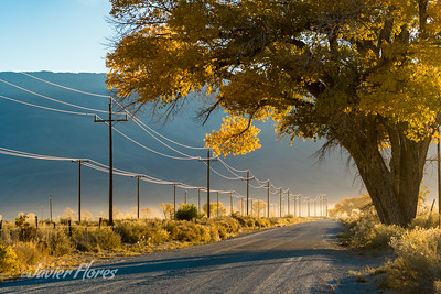 Dirt road and power lines