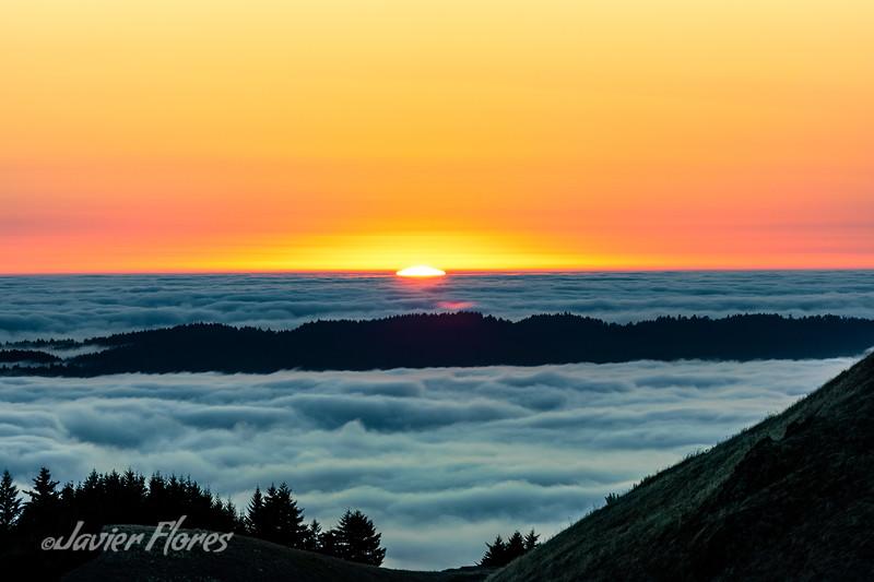 Mount Tamalpais sea of fog at sunset.