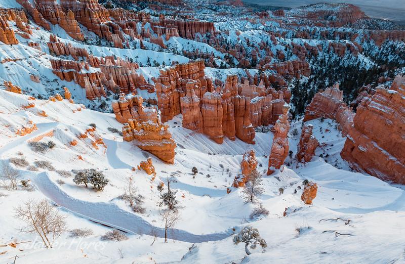 Brice Canyon Trail