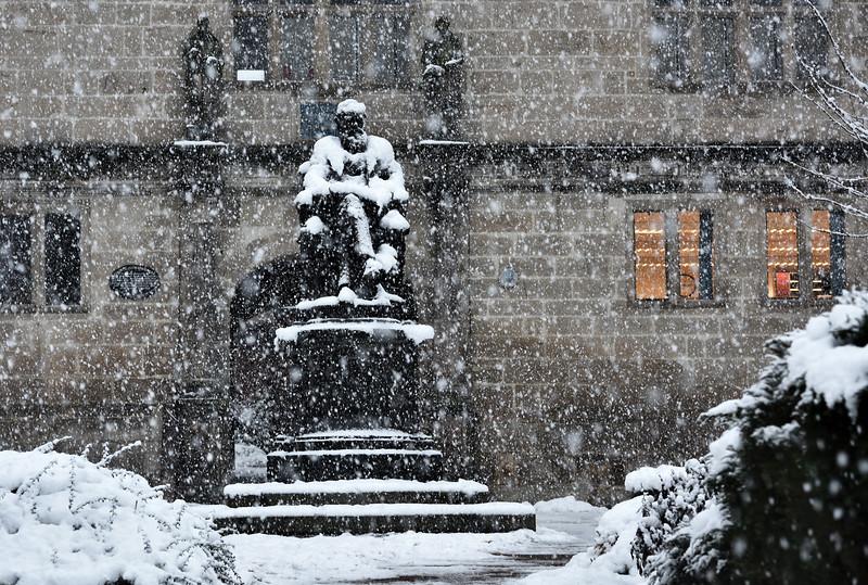 Darwin Statue, Shrewsbury Library.