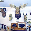The Pioneers' Museum in Rugby, ND.