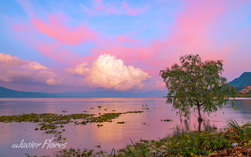 Lake Chapala Sunrise