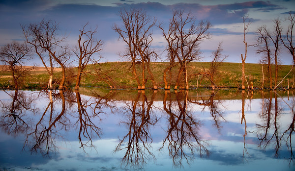 Saskatchewan Reflection