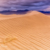 Mesquite Flat Dunes On The Move