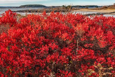 Midcoast Maine