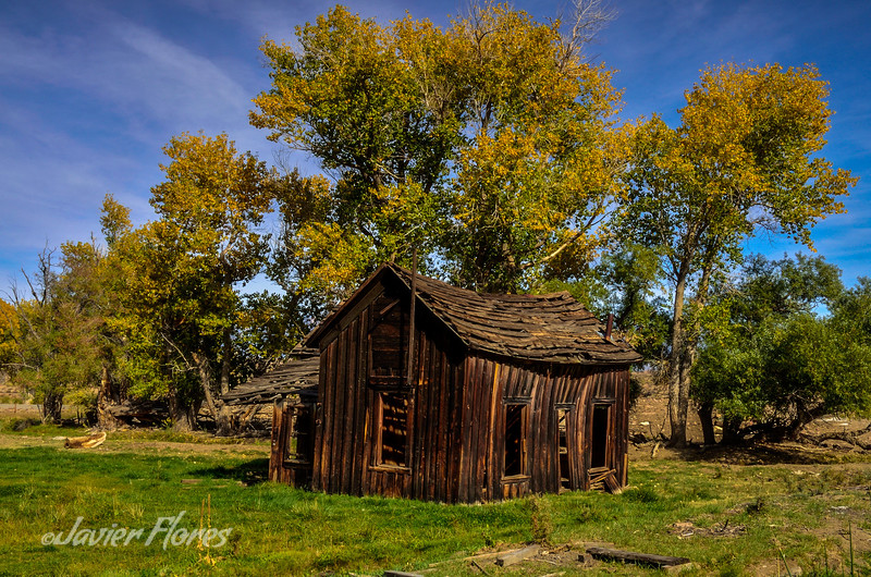 Old Wooden Shack