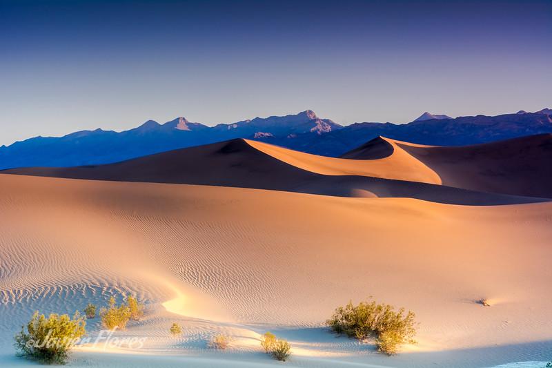 Dunes at Sunrise