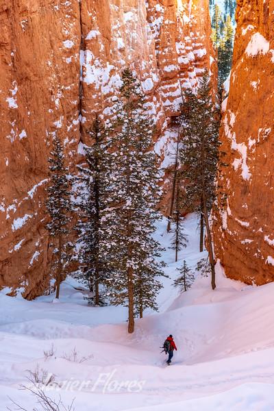 Bryce Canyon Switch Backs