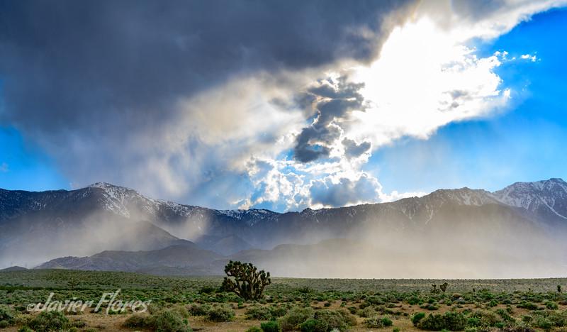 Eastern Sierra Rain Shower