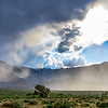 Eastern Sierra Rain Shower