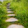 Pathway to a secret garden