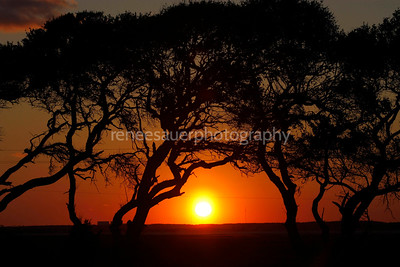 fort fisher sunset