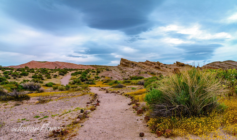 Hiking Path, Red Rock Canyon