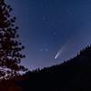 Comet Neowise, Yosemite CA