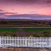 White picket fence looking over farmland