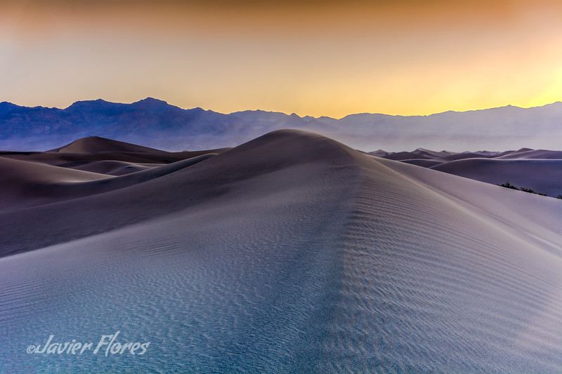 Mesquite Flats at Sunrise