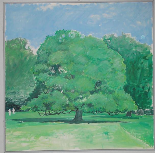 Træ i Dyrehaven