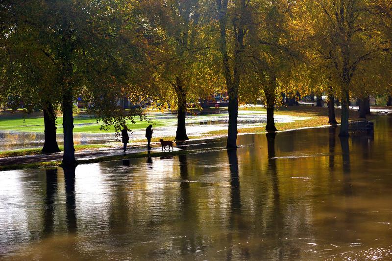 Autumn flooding in the quarry, Shrewsbury