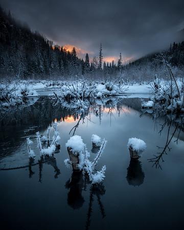 Stillness...frost flowers on a beaver pond near Retallack BC