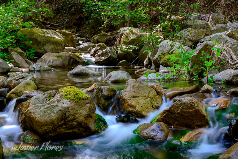 Uvas Canyon County Park waterfalls