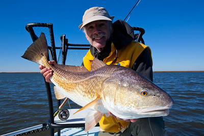 16lb. Redfish.
