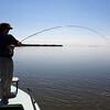Florida Bay redfish on fly
