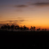 Everglades sunrise new years day 2009.