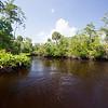 Natural Florida.