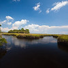 The marsh at the mouth of the Suwannee River in northern Florida.